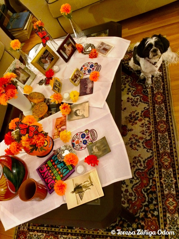My coffee table altar with pictures of my mother's family - her parents, sister, grandparents...  My pup, Lucy helped by watching.