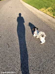 Me and my shadow - Lucy