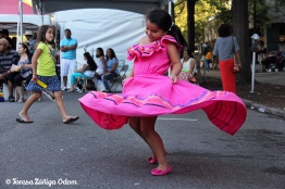 The Twirling Girl in her pink dress...I simply love this photo from Fiesta 2014 and the pure joy of this photo!