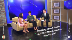 CBS42 segment