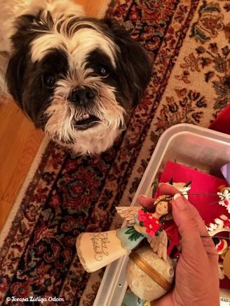 Mama...can I help you with the Feliz Navidad ornaments?