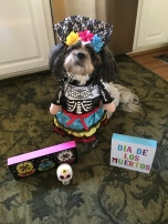 All dressed up for Dia de los Muertos